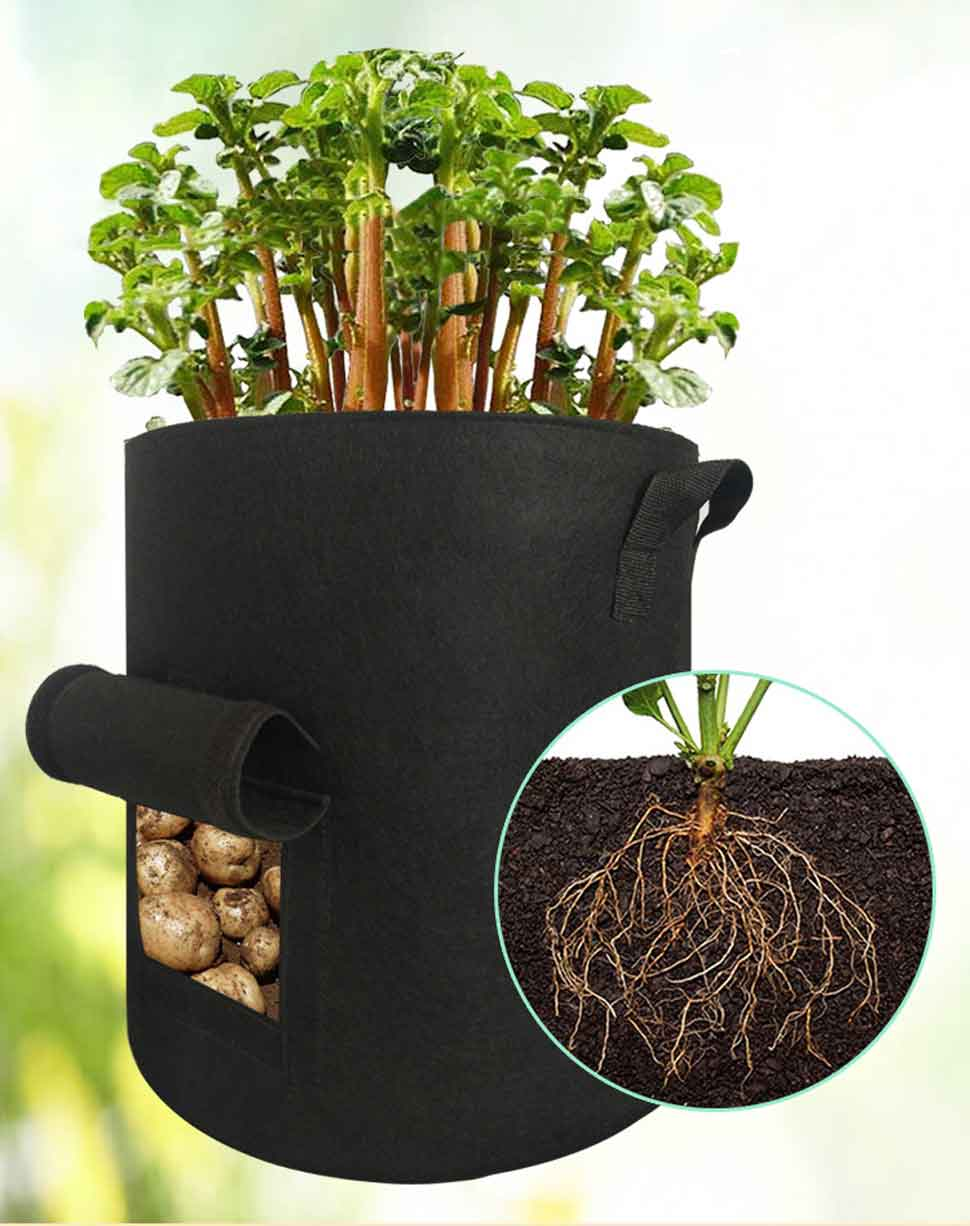 vegetable grow bags 2